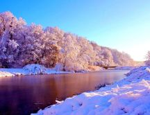 Wonderful landscape - White trees full with snow near river