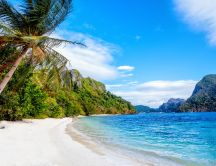 Forest beach and blue ocean water - Holiday in Philippines