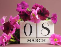 Wonderful pink and purple flowers for a special day - 8March