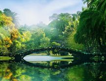 Iron bridge in a tropical park - Spring sunny day