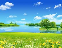 Nature landscape green grass and blue water