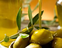 Olive oils - Cold pressure for delicious and tasty food