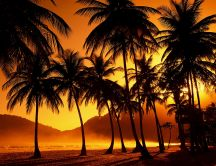 Orange sunset on the beach - Island relaxing place