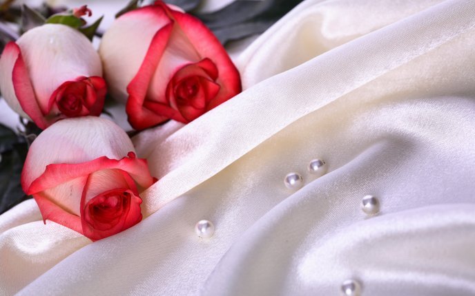 Pure roses and white pearls