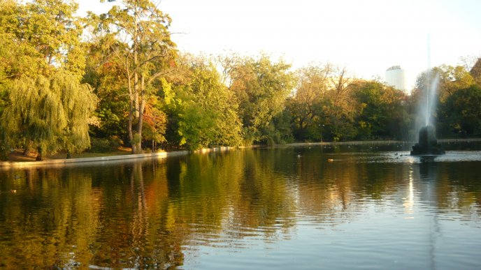 Lake in a parc