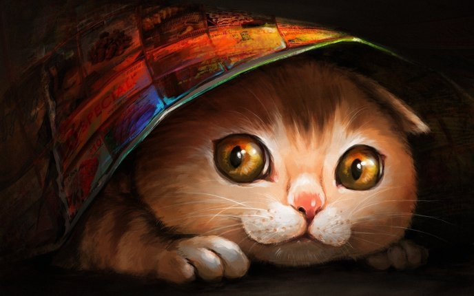 Drawing Colorful Cat Hiding