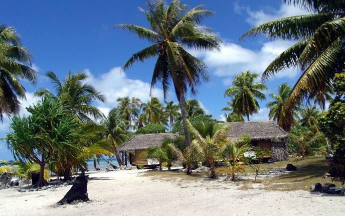 Tropical island summer houses
