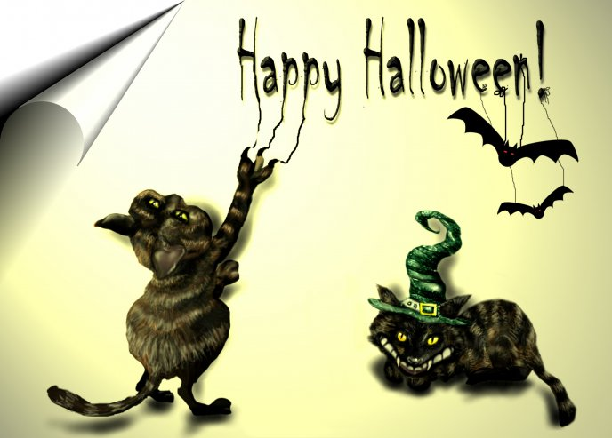 Happy Halloween  - scary cats and bats