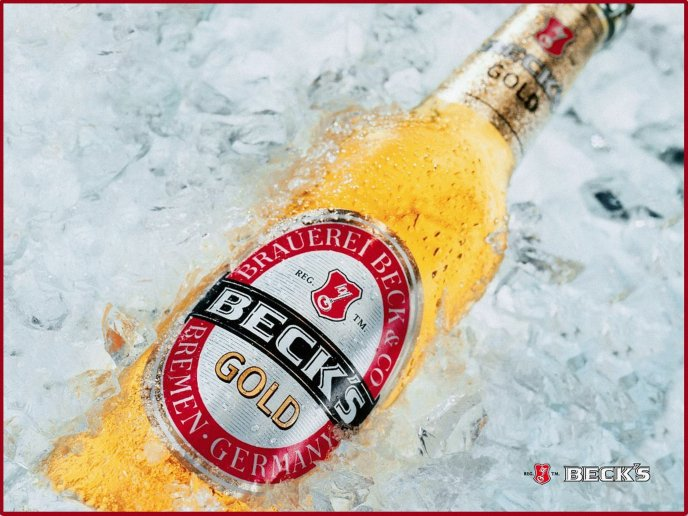 A bottle of beer in ice - Beck's gold