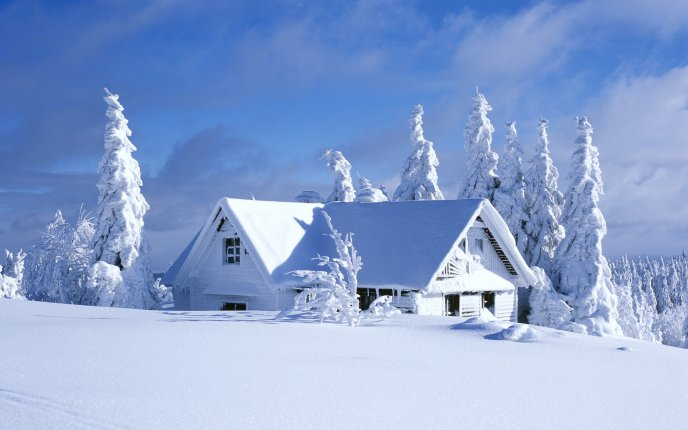 Snowy white house - snow is everywhere HD wallpaper