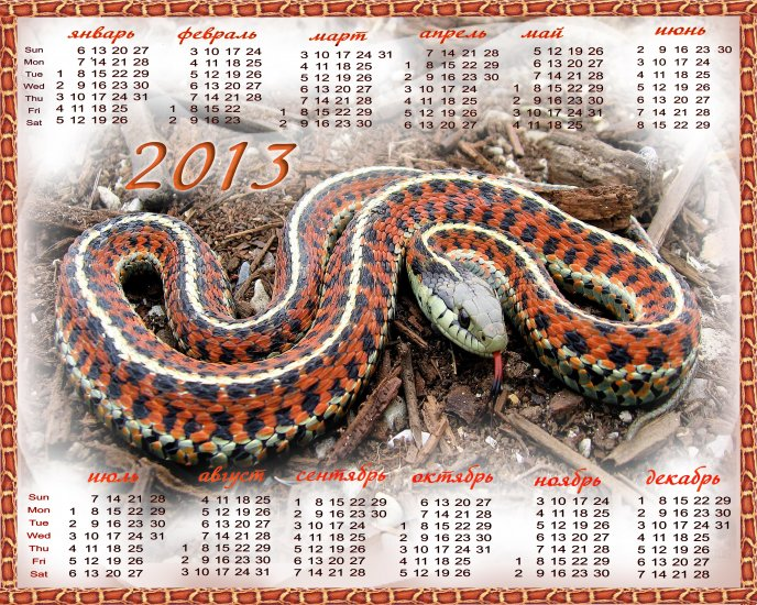 Calendar 2013 - The year of the Water Snake