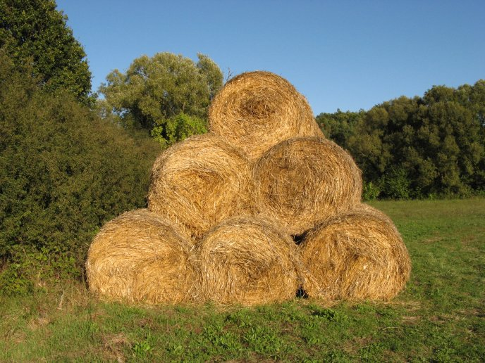 Bales of hay sit in a triangle HD wallpaper