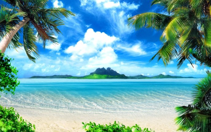 Beautiful tropical landscape - summer holiday
