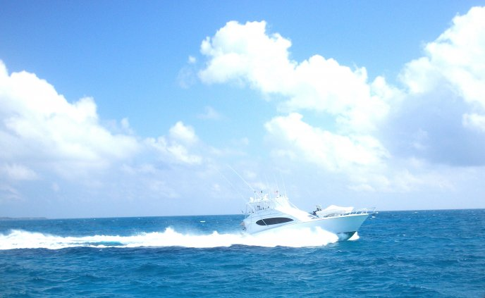 Speed boat making waves on the sea - summer holiday