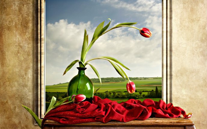 A vase with red tulips on window