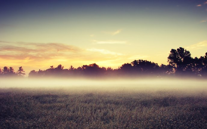 A barrier of fog early in the morning - HD wallpaper