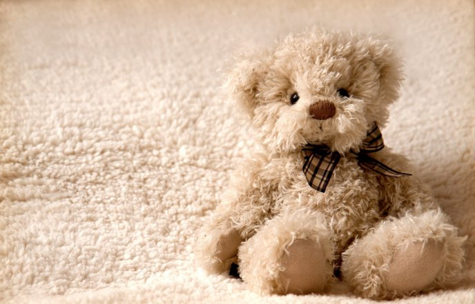 Carpet or teddy bear - sweet fluffy toy for kids