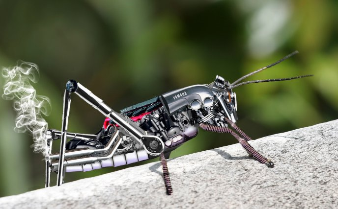Creative mind - robotic fly smoke