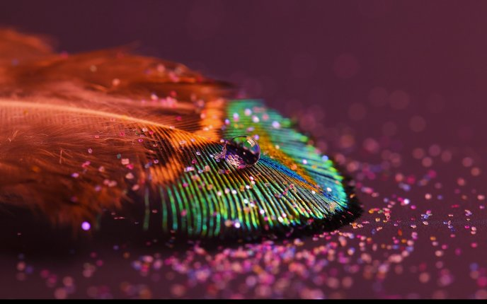 Beautiful water drop on a painted leaf - macro HD wallpaper