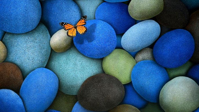 Little orange butterfly on the blue rocks - HD wallpaper