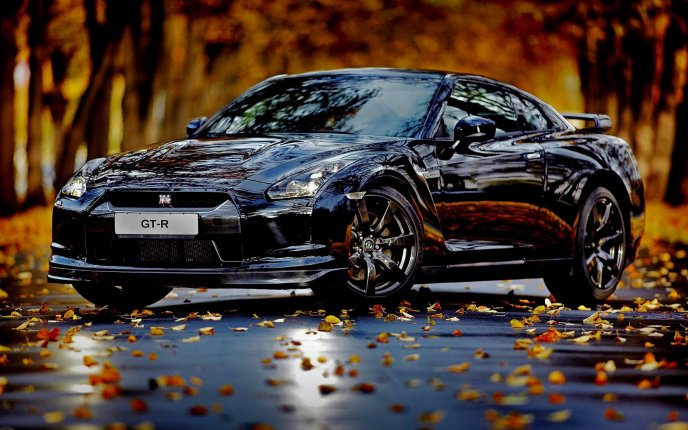 Nissan Skyline GT-R - beautiful car on the road