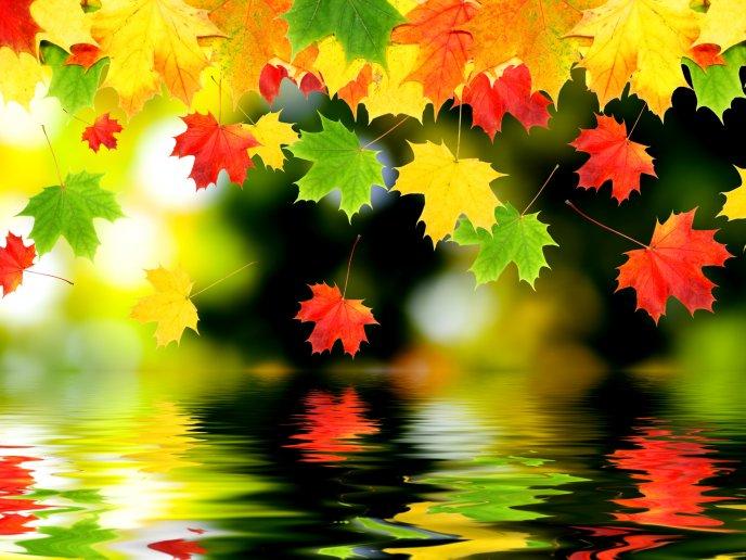 Download Wallpaper Artistic Autumn