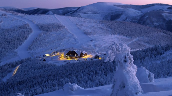 Beautiful hotel in the middle of forest - winter wallpaper