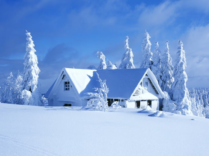 White winter landscape - House covered with snow