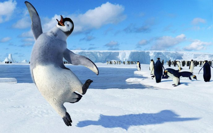 Happy Feet - funny animation movie with sweet penguins