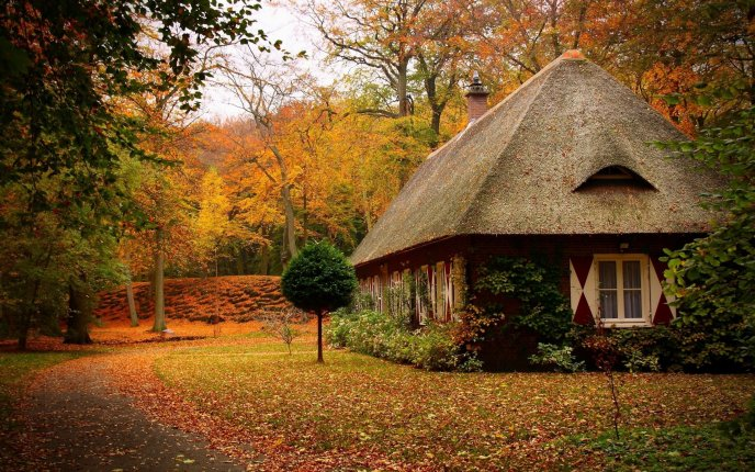 Old house in the middle of the nature - beautiful Autumn