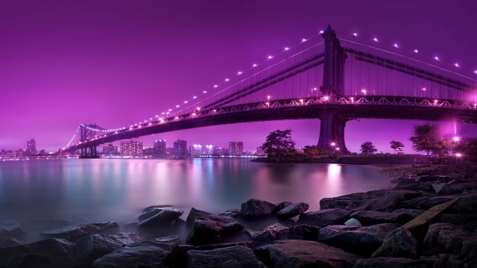 Wonderful purple color of the sky - bridge in the night