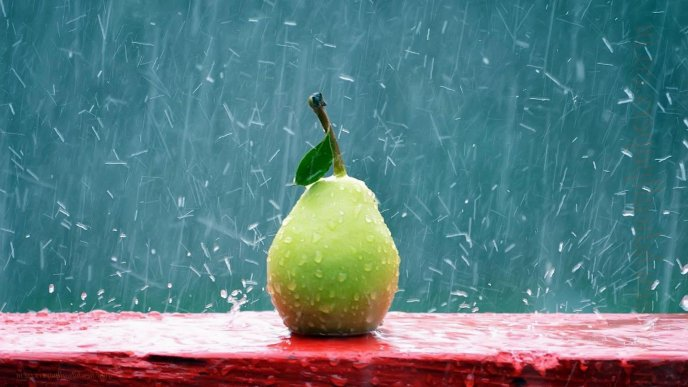 Rain over a delicious pear - HD wallpaper