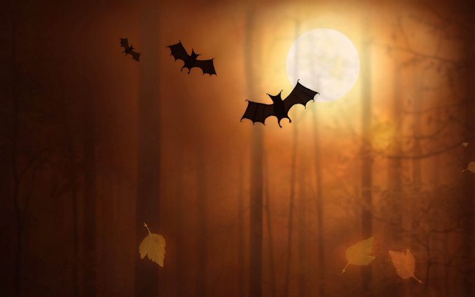 Bat in the light of moon - Happy Halloween night