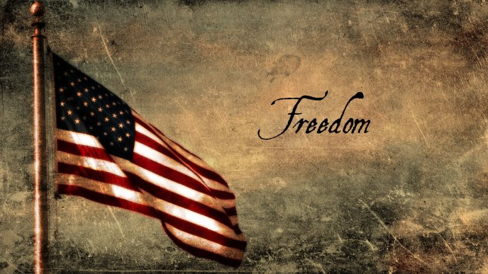 Download Wallpaper Freedom And USA Flag