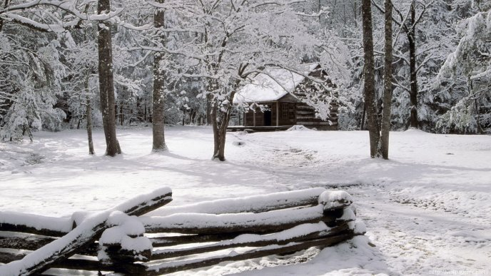 White house in the middle of the forest - Cold Winter season