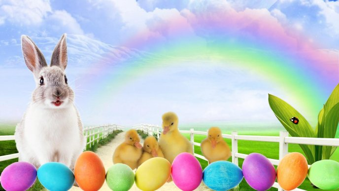 Rabbit and little ducks at Easter Holiday - Coloured eggs