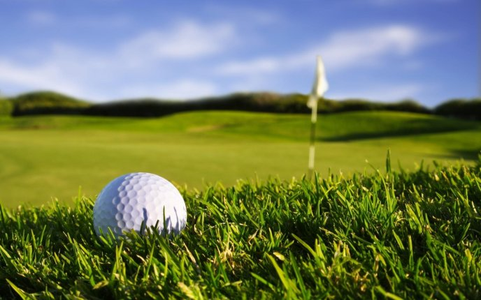 Download Wallpaper Macro golf ball on the sport field - HD wallpaper