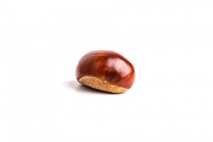 One big chestnut on a white background - HD wallpaper