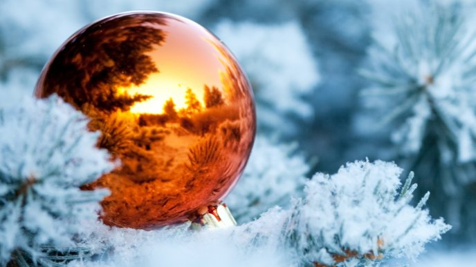 Wonderful Christmas ball on an ice tree - Nature in mirror