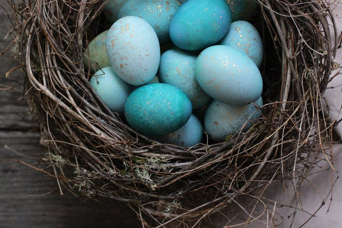 Wonderful blue Easter eggs in a bird nest - Happy Holiday