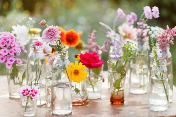 Download Wallpaper Beautiful spring flowers in bottles on the table
