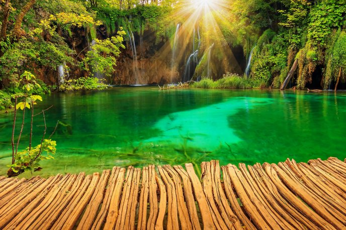 Green water in a wonderful natural park in Croatia -Plitvice