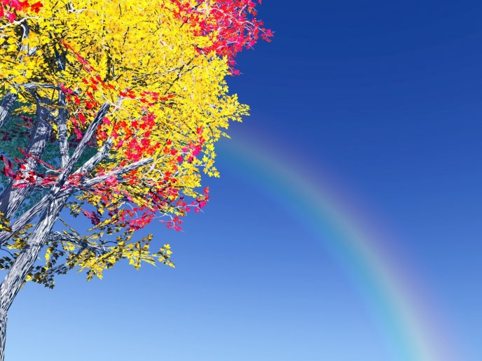 Rainbow on the blue sky near a colorful tree - Beautiful day