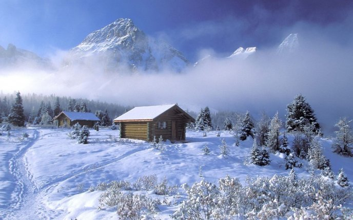 Mountain above the foam - Beautiful white nature Winter time