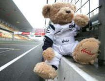 Formula 1 teddy bear