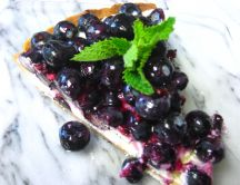 Delicious slice of blueberry marscapone cheese tart
