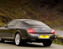 Bentley Continental back