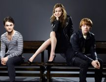 Harry Potter, Hermione Granger and Ron Weasley
