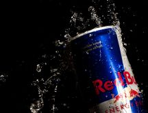 Red Bull - energy drink, brand