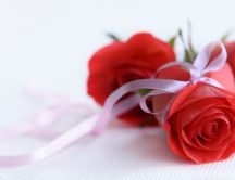 Red roses - bouquet HD wallpaper